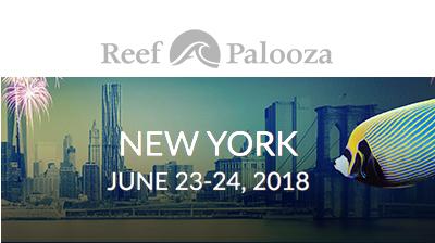 Reef-A-Palooza New York